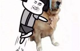 春节出行潮爸辣妈再也不担心了,第四代胜达帮你搞定熊孩子