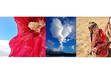 跟随着vivo S6后置四摄的视角 一起探索云南四季美景