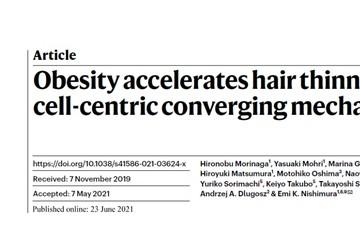 一个悲伤的故事今日自然发现肥胖令人头秃